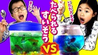 どっちの水槽たべたい? 食べられる アクアリウム🐠🐟 DIY チャレンジ💥 料理 対決😆 女子 VS 男子