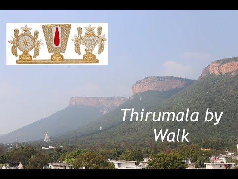 Tirupati to Tirumala By Walk Vlog