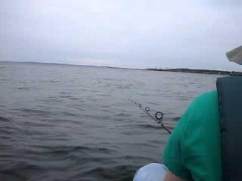 Porgy Fishing NY Rye Playland Duratech