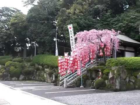 Hojiji Buddhist Temple in Atsuta, Nagoya Japan