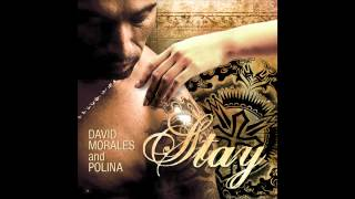 David Morales & Polina - Stay (Cover Art)