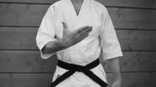 видео уроки айкидо для начинающих. Клуб айкидо