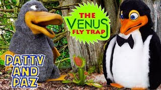 Patty and Paz | Venus Flytrap | Kids Shows | Animals for Kids | Funny KIDS Compilation