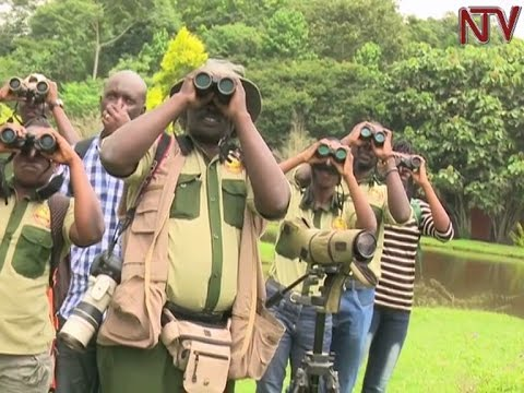 Tourism sector to promote bird-watching as niche market for Uganda