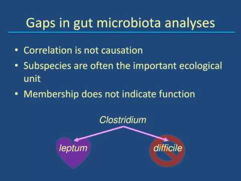 Dr. Heather Allen - The Swine Gut Microbiota: Status and Outlook