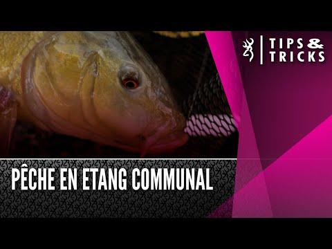 Pêche en Etang Communal 2021