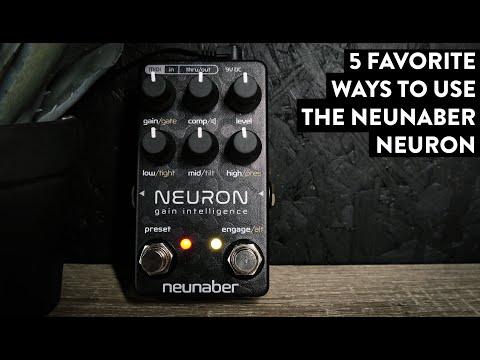 Neunaber Neuron Gain Intelligence - Digital Dirt Done RIGHT! (Stereo)