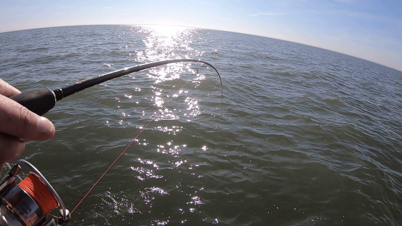 РЫБАЛКА на СУДАКА с лодки в СЕНТЯБРЕ! Рыбалка 2020! (клюет на мандулу)