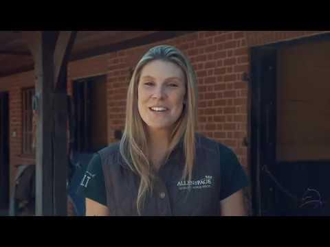 Baldwins Equestrian Rehabilitation Yard