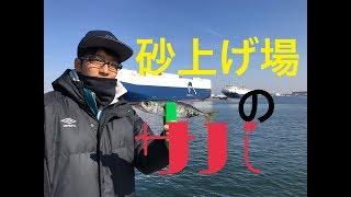 fishingmax 泉大津店 3/18 砂上げ場 thumbnail
