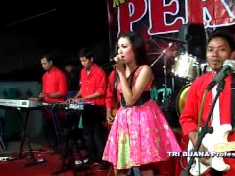 """Download lagu Mp3 Sandiwara - Elsa Safira Om.""""NEW PERSADA"""" Live Jatilengger Blitar gratis"""
