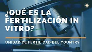 ¿Qué es la Fertilización In Vitro? | Nuestros tratamientos