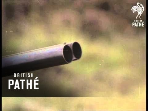 Grouse Shooting In Scotland (1970-1979)