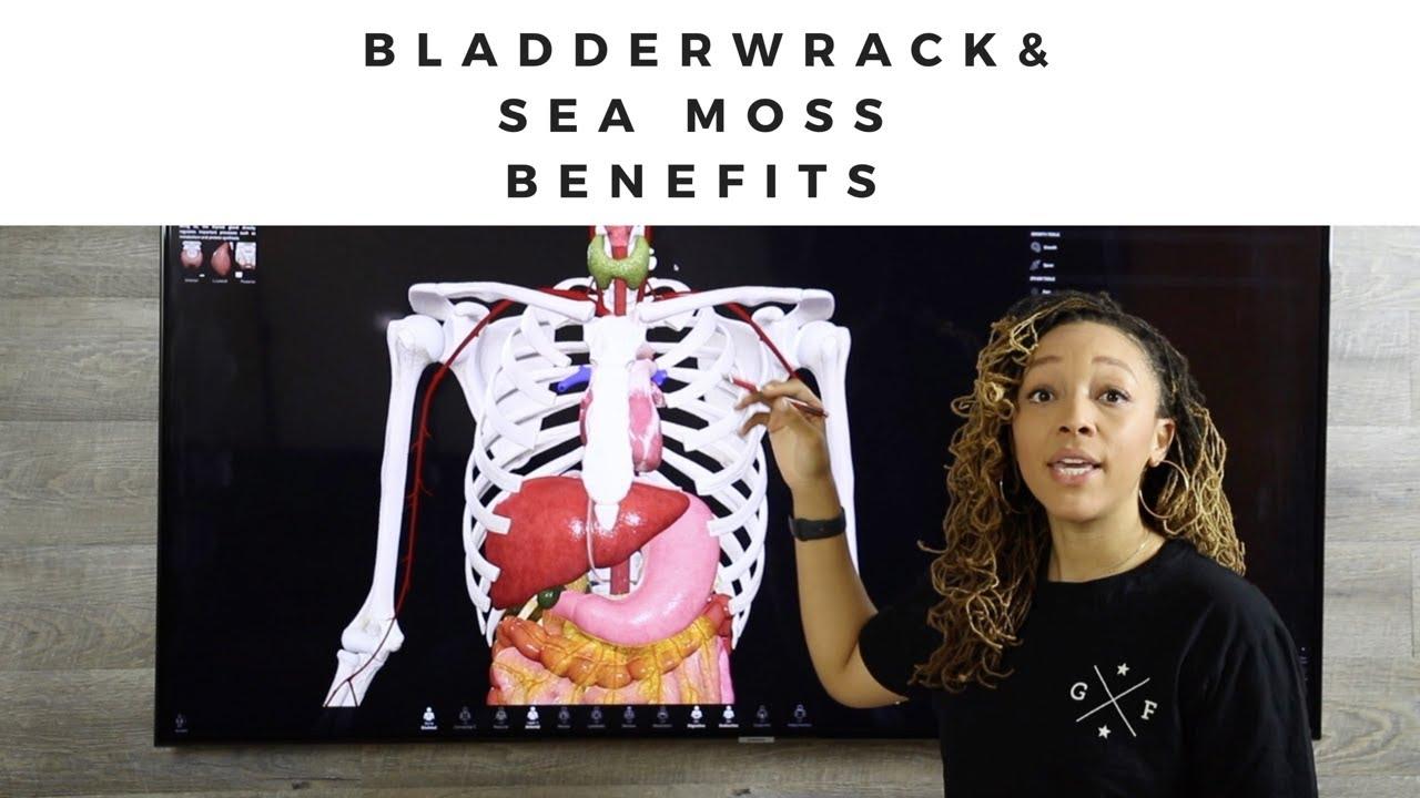 Benefits of Bladderwrack & Sea Moss