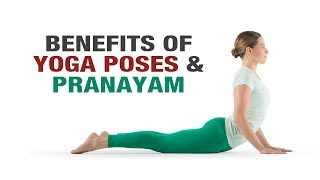 Benefits of Yoga Poses & Pranayam- Yog shakti- Shelly Khera