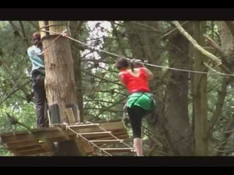 Adrenalin forest coupons