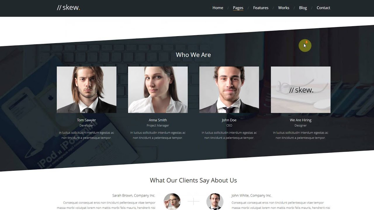 Skew - Creative One Page & Multipage WordPress Theme Installation ...