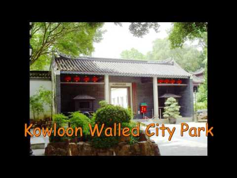 Kowloon cultural Highlights limousine private tour