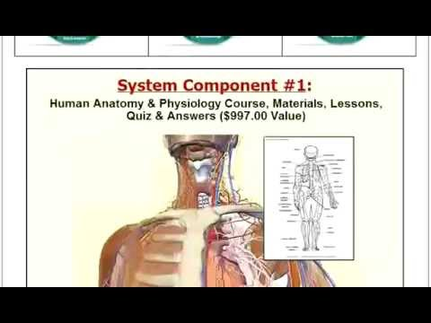 How to Study Anatomy in Medical School? - Rish Academy