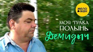 Демидыч  - Моя трава полынь (клип) 12+