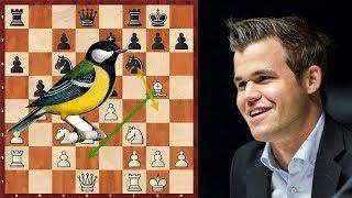 "Шахматы. Ставангер - 2018: Магнус Карлсен предпочёл ""синицу в руках""!"