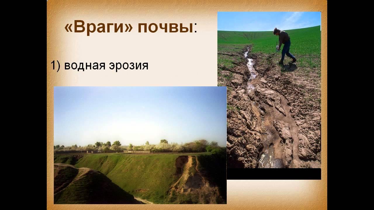 презентация по теме что такое почва 3 класс