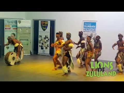 Lions of Zululand at Hetton School, Sunderland