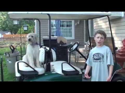toy cart, cart car, ikea kitchen cart, shopping cart, on shooting golf cart to cart.html