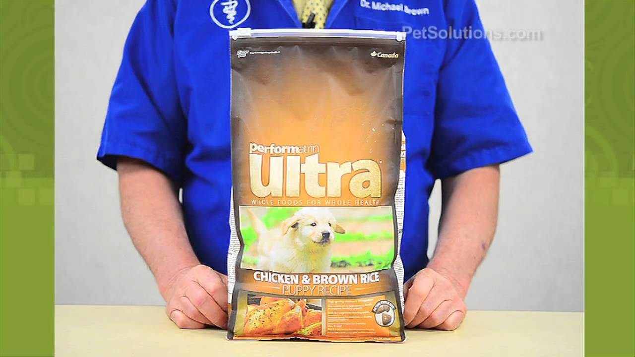 Petsolutions performatrin ultra chicken brown rice recipe dry petsolutions performatrin ultra chicken brown rice recipe dry puppy food forumfinder Choice Image