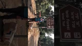Shvil Yisrael-Rabbi Molly Kane Hiking the Israel Trail, Yattir…