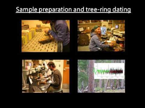 Webinar - Fire regimes of remnant pine communities in Pennsylvania