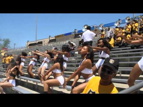 "Alabama State Stingettes ""Jamaica Funk"" (Black & Gold '16)"