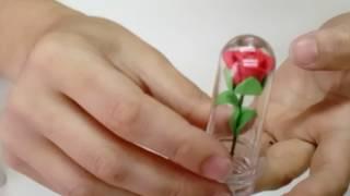 Passo a passo da Micro Rosa na cúpula (parte 2)