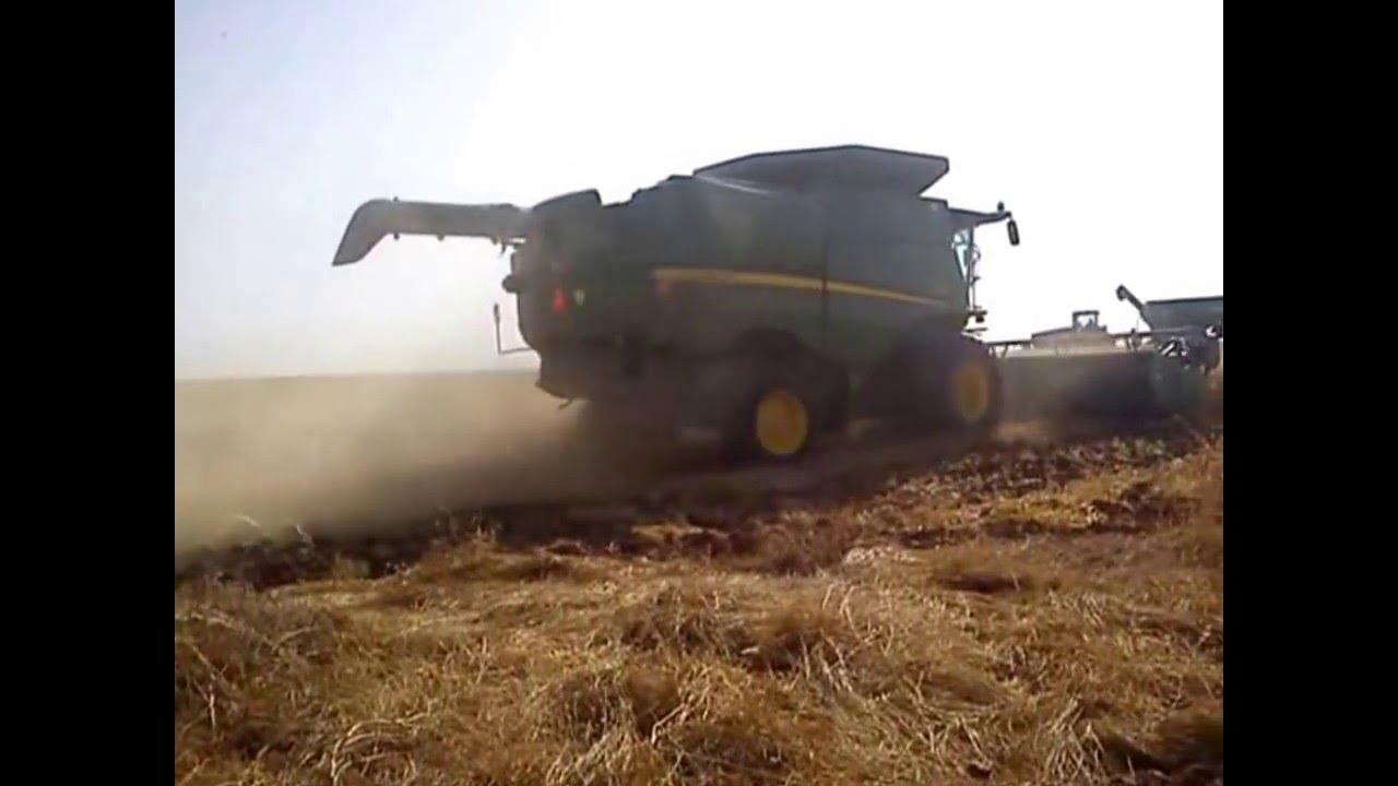 Max Shemesh: Cosecha / Harvest Israel 2016 Near Beit Shemesh