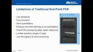 線上課程-Real-Time PCR 原理線上課程