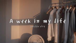 Weekly Vlog : 프리랜서의 일주일 브이로그