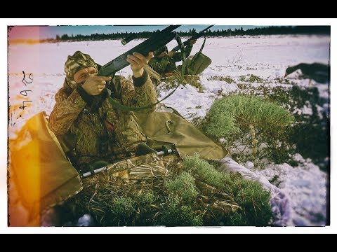 Охота на гуся,