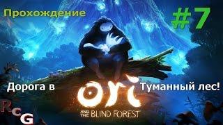 Прохождение Ori and the Blind Forest #7.Дорога в Туманный лес!