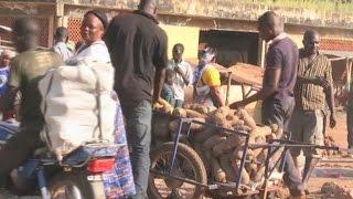 Togo, Contribution de l'agriculture à l'économie nationale