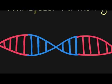 Introduction to Transposons