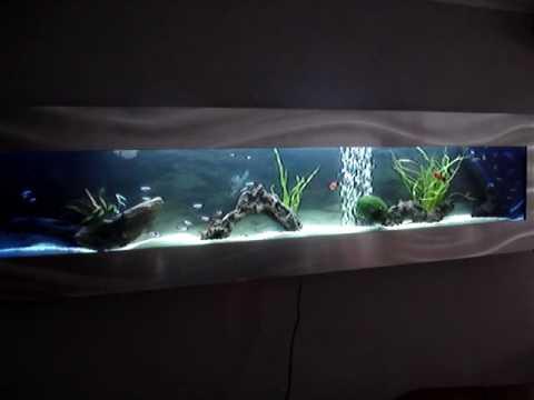 flatscreenaquarium 175 met tropische vissen aquarium als een flatscreen aan de muur neon tetra. Black Bedroom Furniture Sets. Home Design Ideas