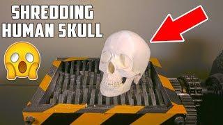 Shredding Human Skull