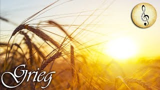 Grieg Classical Music for Studying | Relax Orchestra Music | Study Music for Reading Concentration