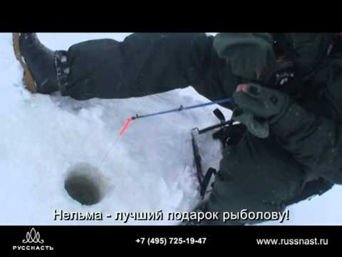 Зимняя ловля судака в камском устье видео Смотреть лучшее видео