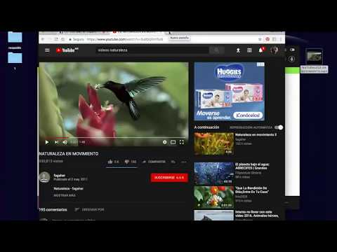 ¿Cómo Descargar Videos de YOUTUBE ?
