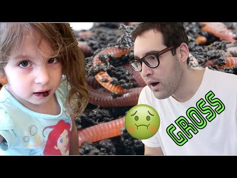 FAMILY EATS DIRT AND WORMS || LIFE WITH JACKIE FAMILY VLOGS