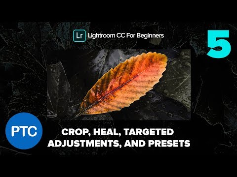 Crop, Heal, Targeted Adjustments and Presets - Lightroom CC for Beginners FREE Course - 05