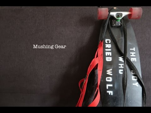 BASIC MUSHING GEAR