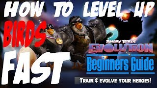 Angry Birds Evolution - How To Level Up Birds Fast