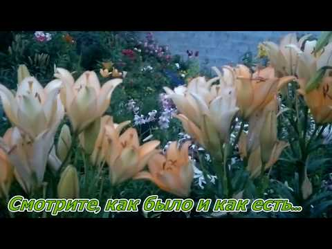 Как переделать цветник . Райский сад